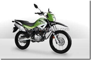 Hero Impulse Dirt Bike Official Picture India (2)