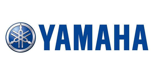 Yamaha Mt25 Naked Bike Revealed