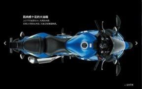 suzuki-gsx-250r-moto-gp-edition-images-top-view