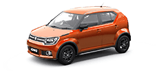 maruti ignis official colour options uptown red