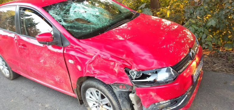 Volkswagen Polo Comes In Way Of Fighting Bulls – See The Damage