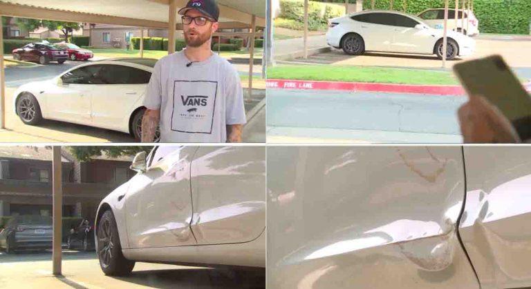 Tesla Valet Mode MALFUNCTIONS; Auto Pilot Drives Into A Pole