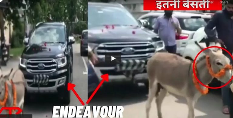 Disgruntled Owner Uses Donkey To Tow His Ford Endeavour to Dealership