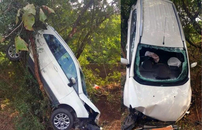 Crashed Ford EcoSport Hanging From Tree Shows Why We'll Miss It Bad